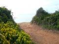 plages-region-portimao-lagoa-12
